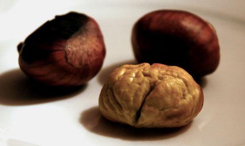 Chestnutcloseup